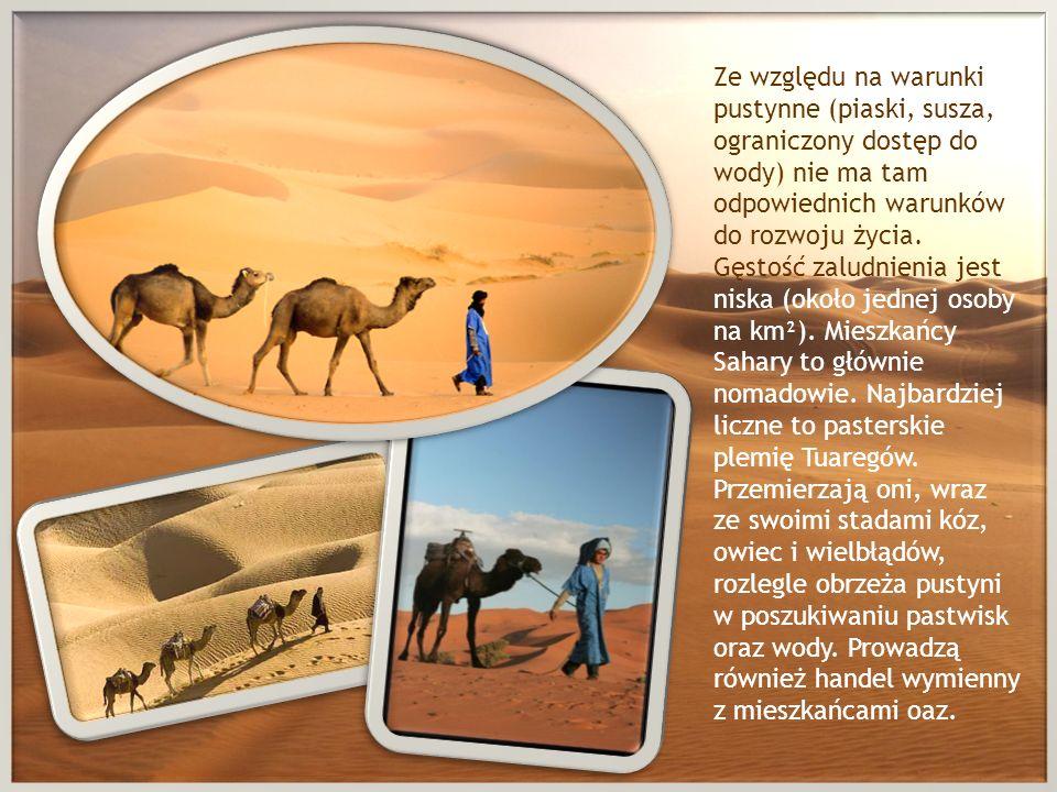 Ze względu na warunki pustynne (piaski, susza, ograniczony dostęp do wody) nie ma tam odpowiednich warunków do rozwoju życia.
