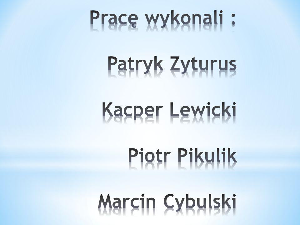 Pracę wykonali : Patryk Zyturus Kacper Lewicki Piotr Pikulik Marcin Cybulski