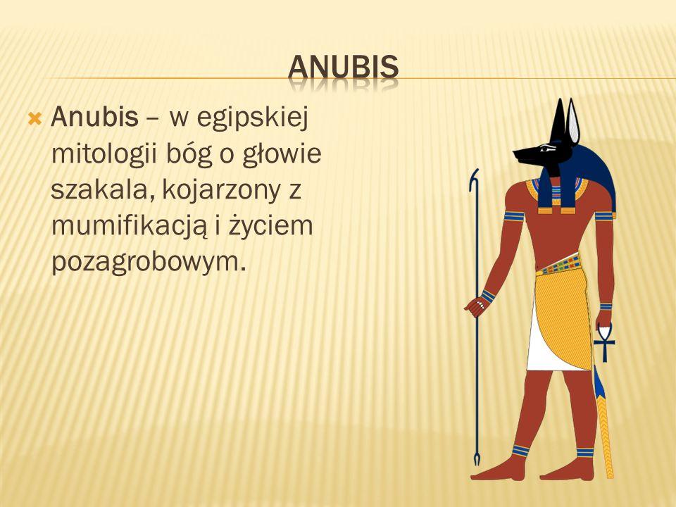Anubis Anubis – w egipskiej mitologii bóg o głowie szakala, kojarzony z mumifikacją i życiem pozagrobowym.