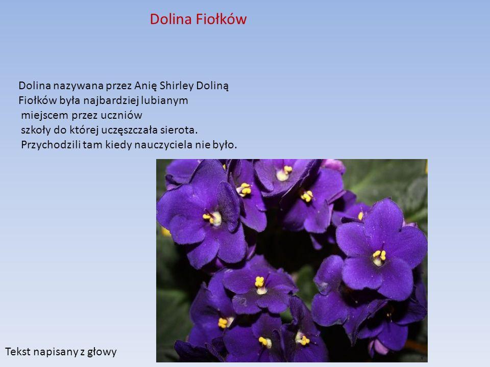 Dolina Fiołków Dolina nazywana przez Anię Shirley Doliną