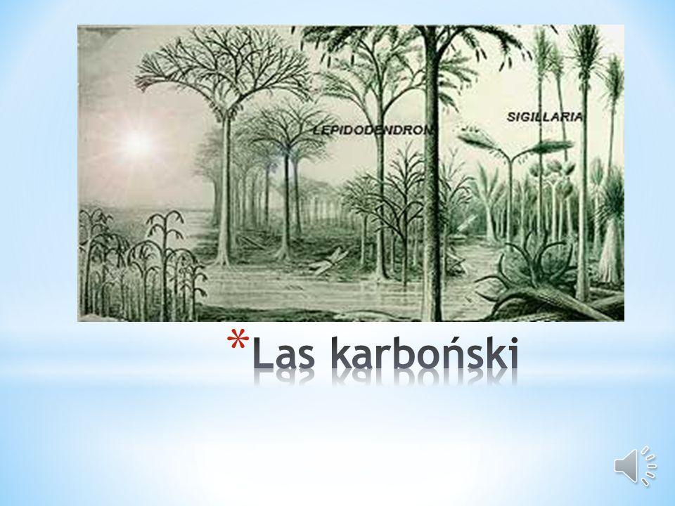 Las karboński