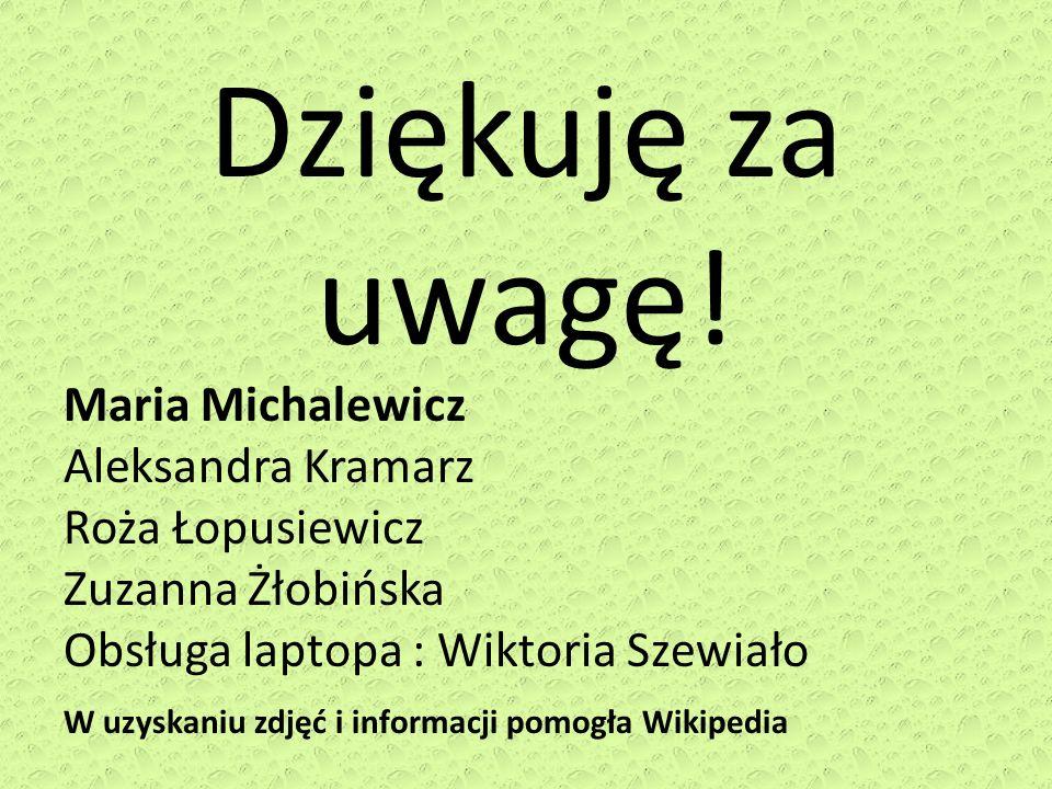 Dziękuję za uwagę! Maria Michalewicz Aleksandra Kramarz