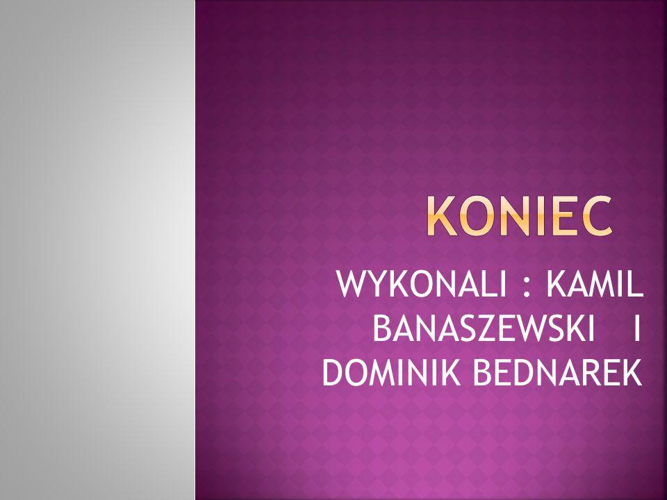 WYKONALI : KAMIL BANASZEWSKI I DOMINIK BEDNAREK