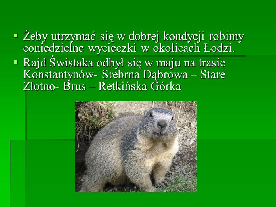 Żeby utrzymać się w dobrej kondycji robimy coniedzielne wycieczki w okolicach Łodzi.