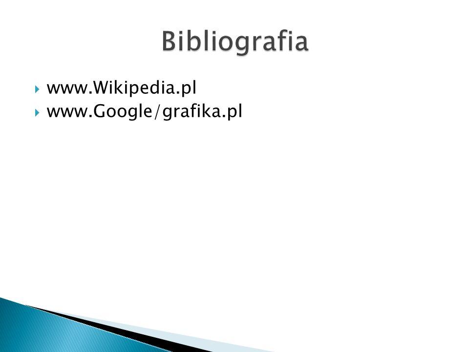 Bibliografia www.Wikipedia.pl www.Google/grafika.pl