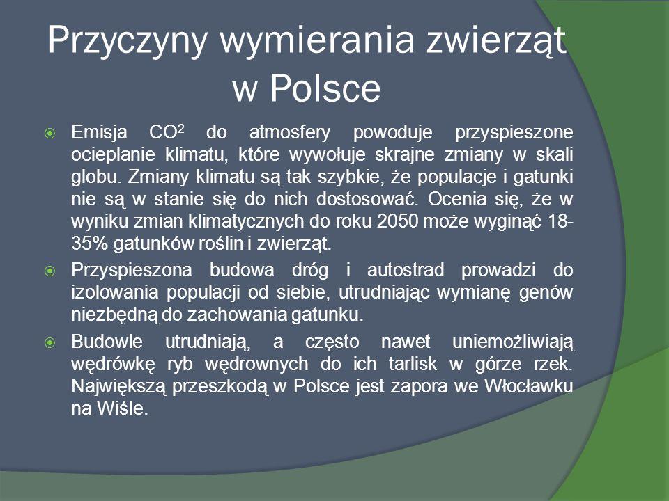 Przyczyny wymierania zwierząt w Polsce