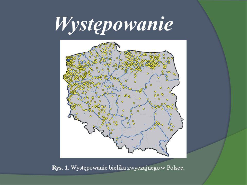 Rys. 1. Występowanie bielika zwyczajnego w Polsce.