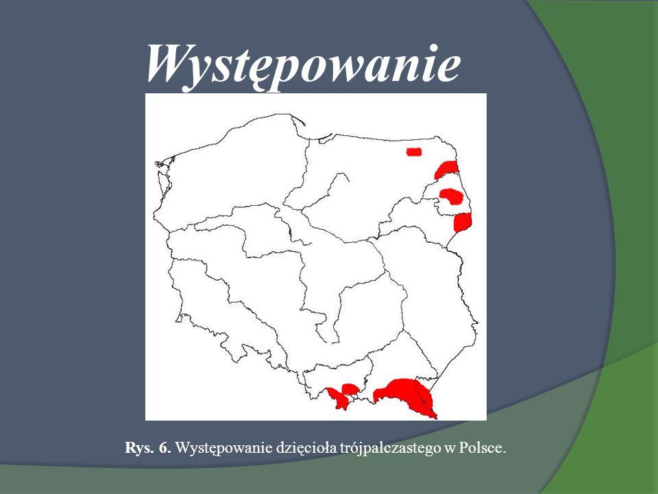 Rys. 6. Występowanie dzięcioła trójpalczastego w Polsce.