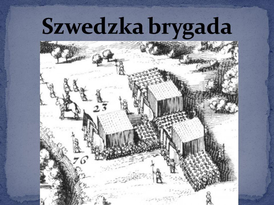 Szwedzka brygada