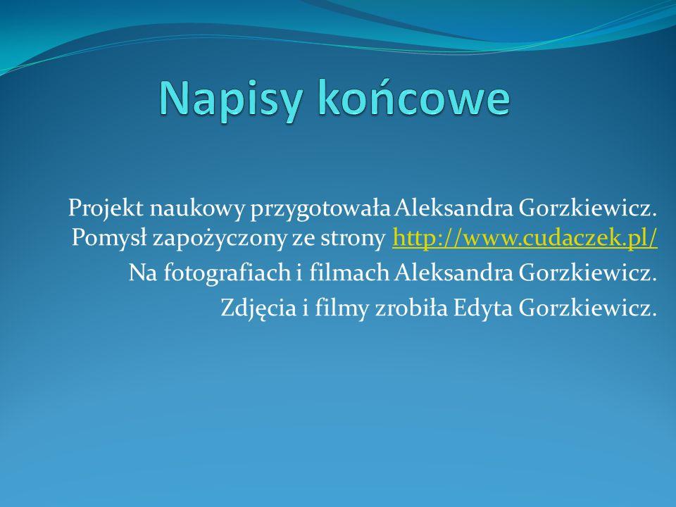 Napisy końcowe Projekt naukowy przygotowała Aleksandra Gorzkiewicz. Pomysł zapożyczony ze strony http://www.cudaczek.pl/