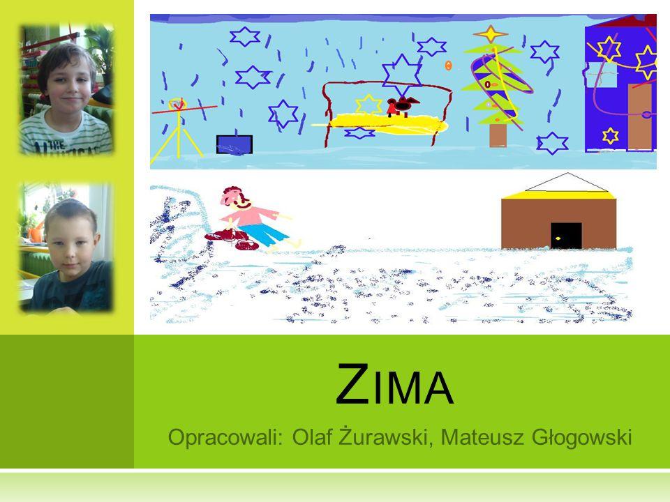 Opracowali: Olaf Żurawski, Mateusz Głogowski