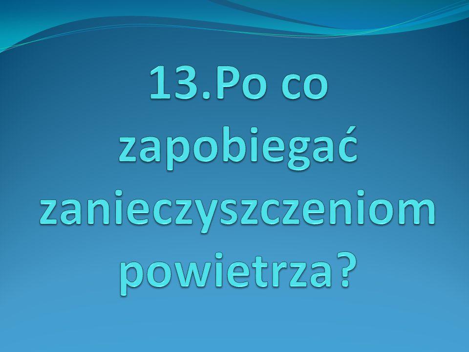 13.Po co zapobiegać zanieczyszczeniom powietrza