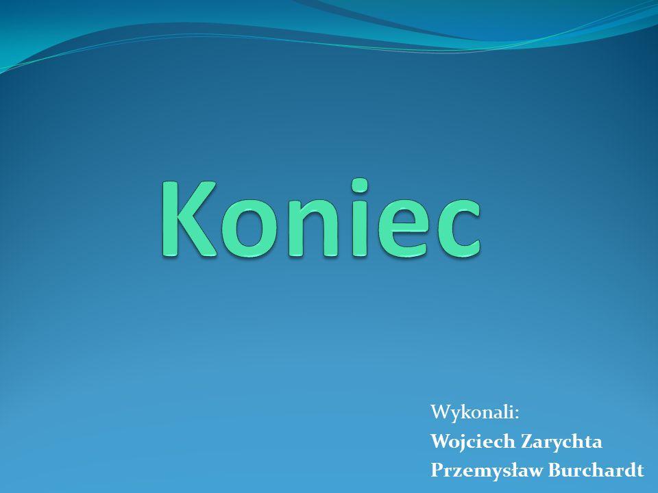 Koniec Wykonali: Wojciech Zarychta Przemysław Burchardt