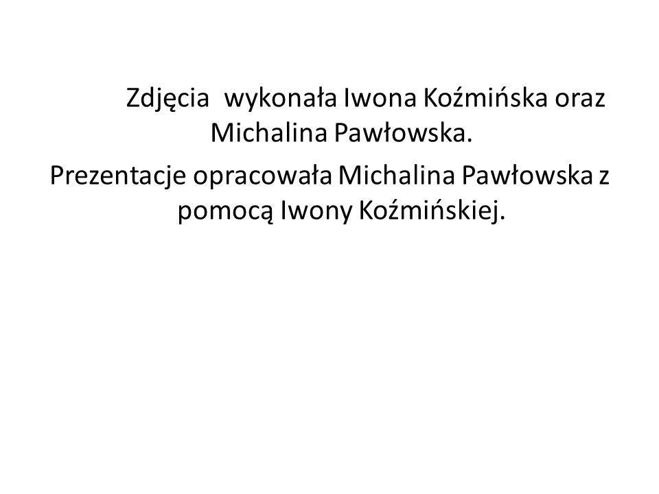 Zdjęcia wykonała Iwona Koźmińska oraz Michalina Pawłowska