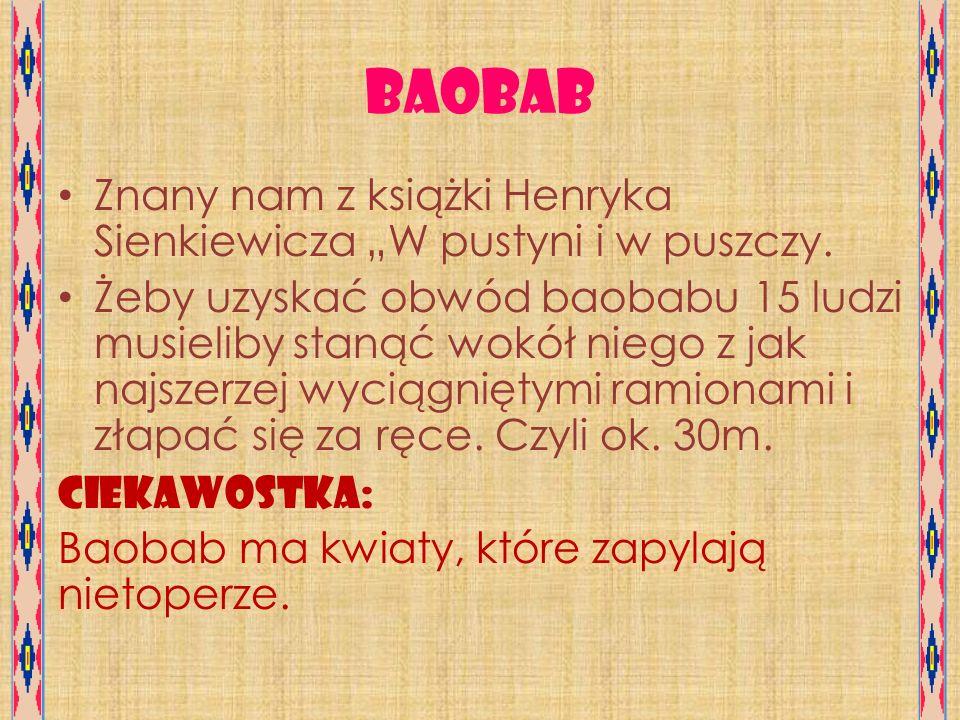 """Baobab Znany nam z książki Henryka Sienkiewicza """"W pustyni i w puszczy."""