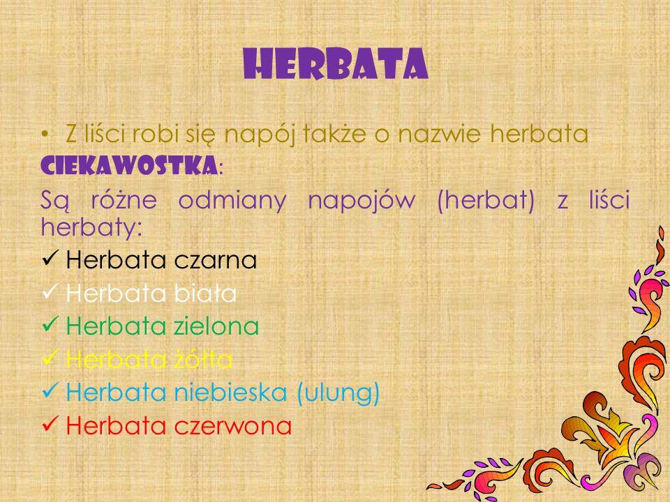 Herbata Z liści robi się napój także o nazwie herbata CIEKAWOSTKA: