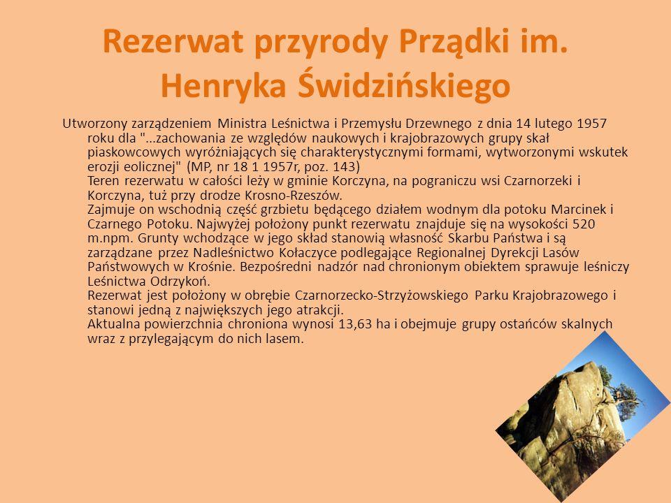 Rezerwat przyrody Prządki im. Henryka Świdzińskiego