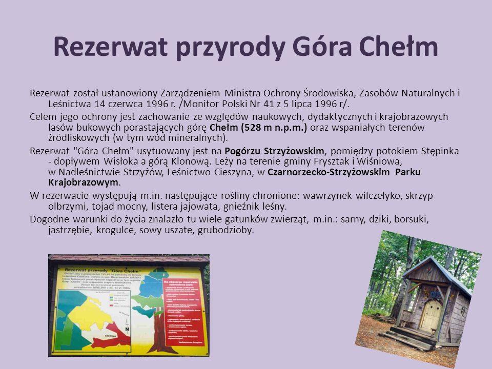 Rezerwat przyrody Góra Chełm