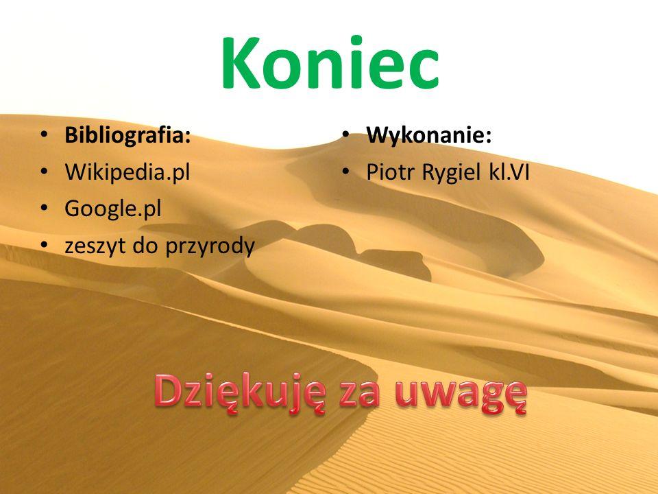 Koniec Dziękuję za uwagę Bibliografia: Wikipedia.pl Google.pl