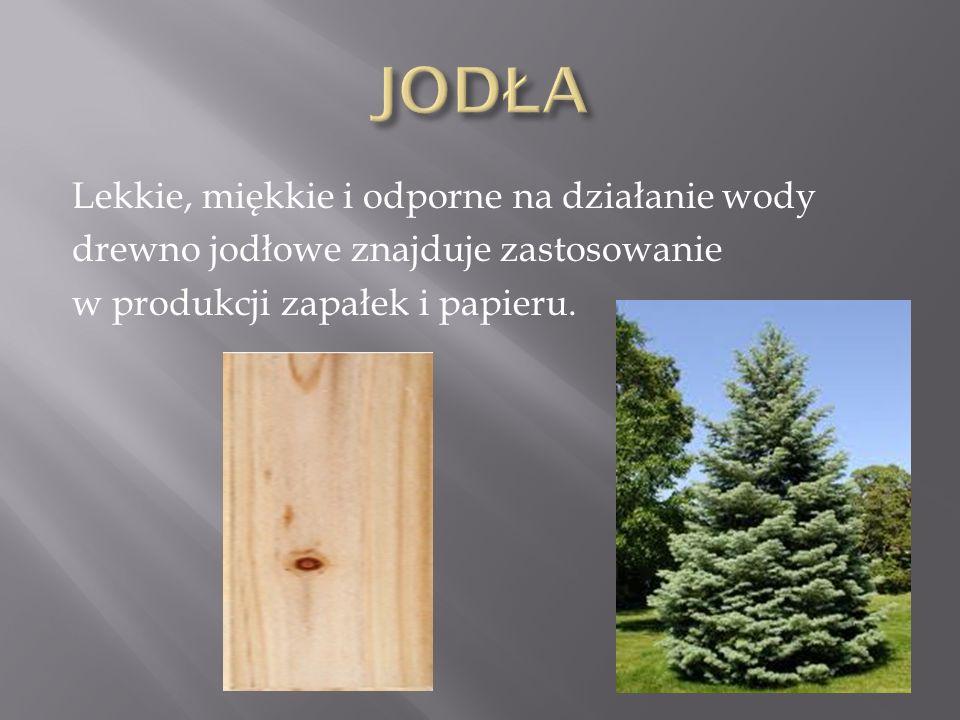 JODŁA Lekkie, miękkie i odporne na działanie wody drewno jodłowe znajduje zastosowanie w produkcji zapałek i papieru.