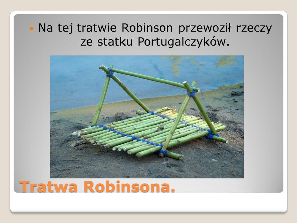 Na tej tratwie Robinson przewoził rzeczy ze statku Portugalczyków.