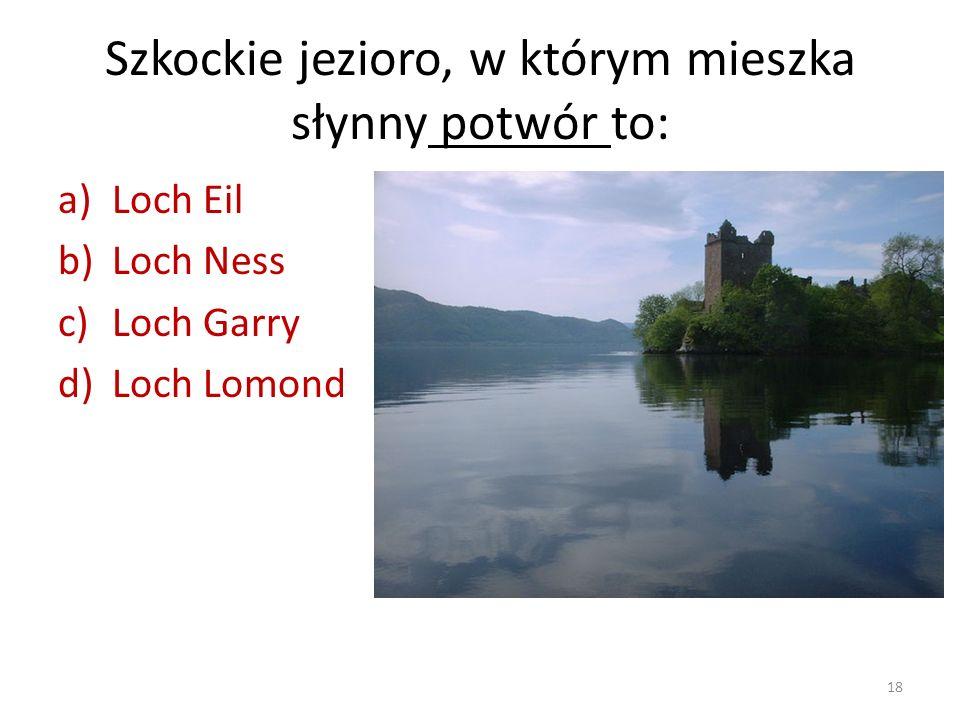 Szkockie jezioro, w którym mieszka słynny potwór to:
