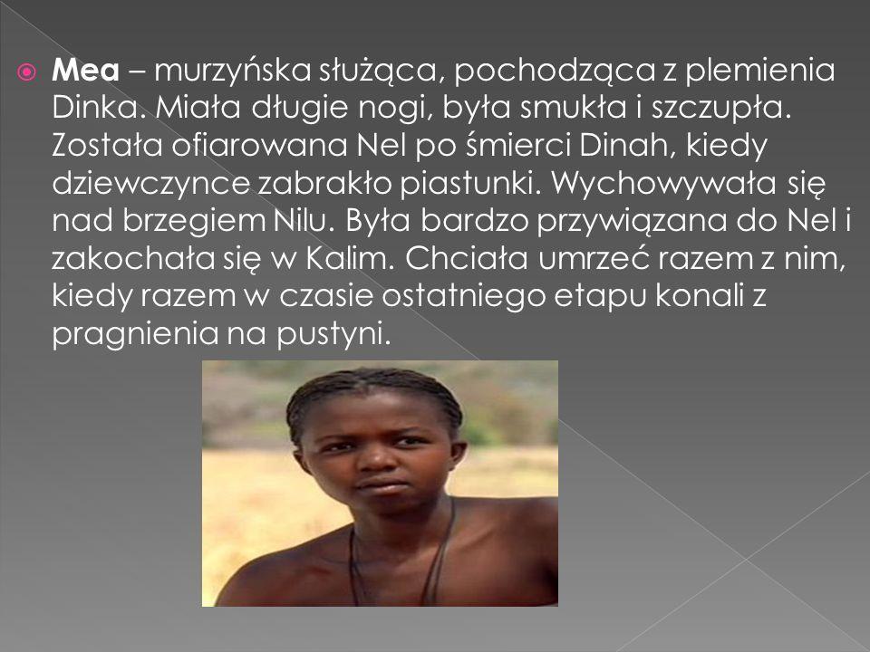 Mea – murzyńska służąca, pochodząca z plemienia Dinka