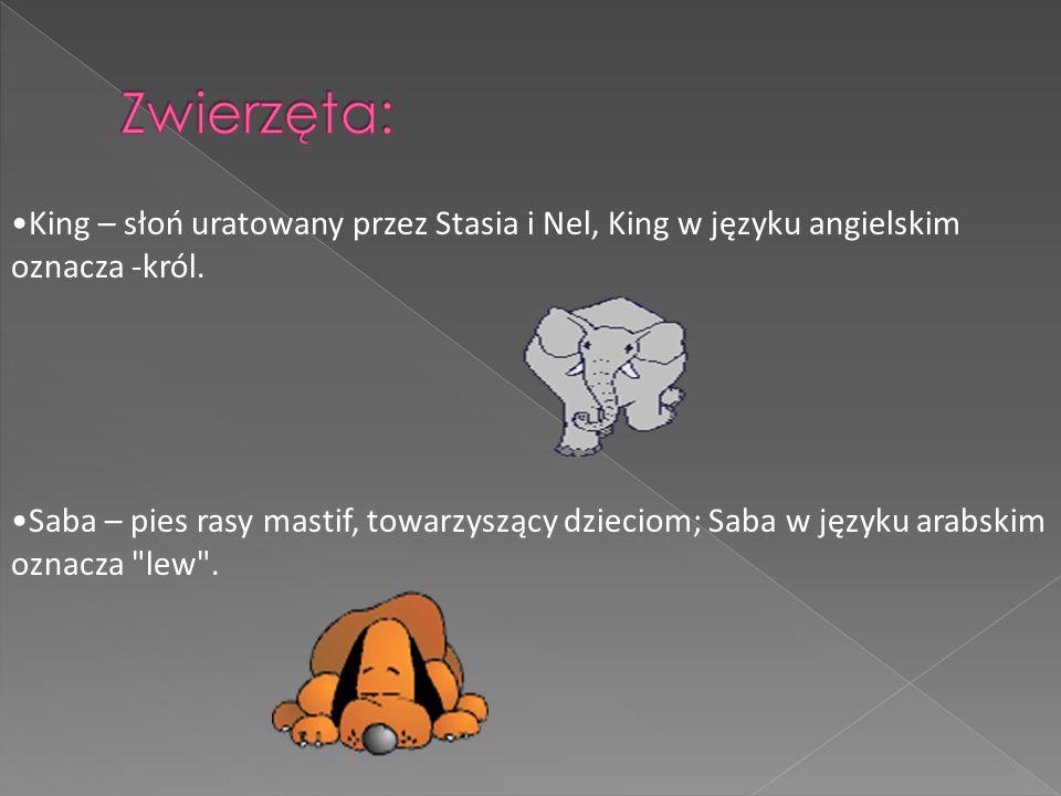 Zwierzęta: King – słoń uratowany przez Stasia i Nel, King w języku angielskim oznacza -król.