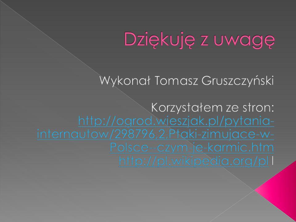Dziękuję z uwagę Wykonał Tomasz Gruszczyński