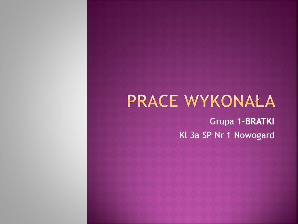 Grupa 1-BRATKI Kl 3a SP Nr 1 Nowogard