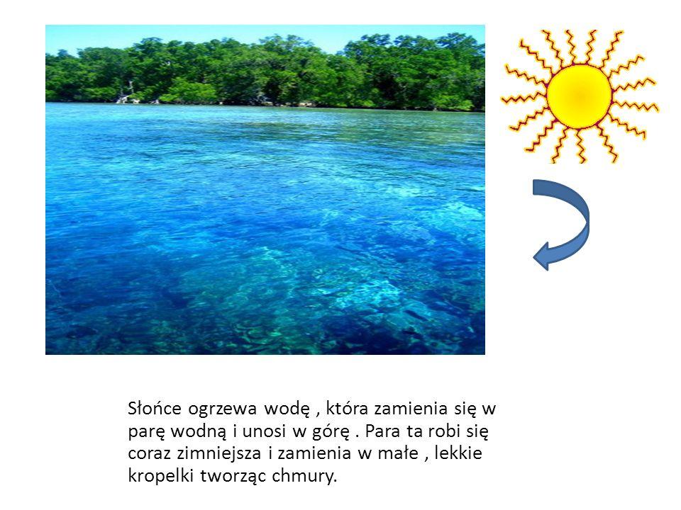 Słońce ogrzewa wodę , która zamienia się w parę wodną i unosi w górę