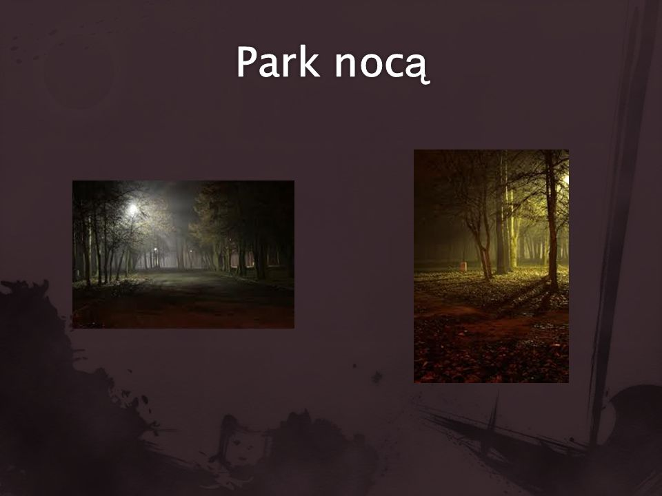 Park nocą