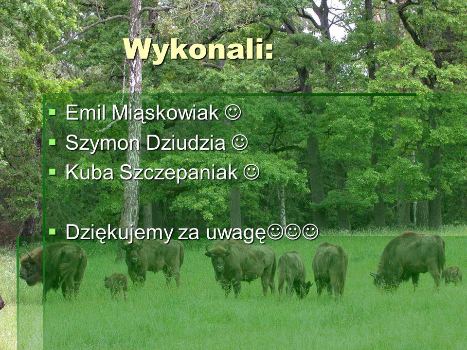 Wykonali: Emil Miąskowiak  Szymon Dziudzia  Kuba Szczepaniak 