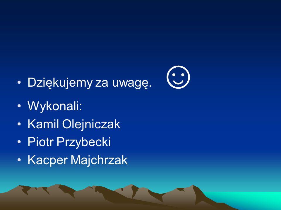 Dziękujemy za uwagę. ☺ Wykonali: Kamil Olejniczak Piotr Przybecki Kacper Majchrzak