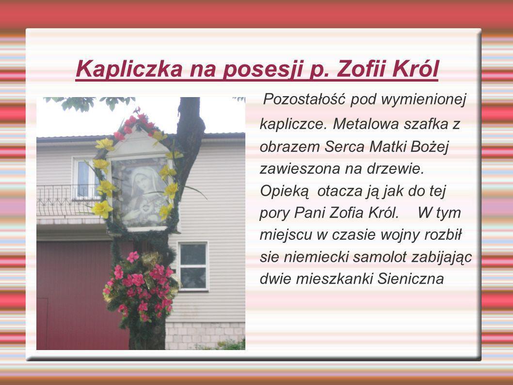 Kapliczka na posesji p. Zofii Król
