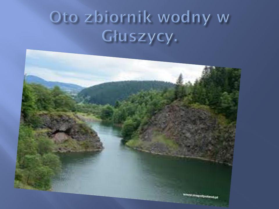 Oto zbiornik wodny w Głuszycy.