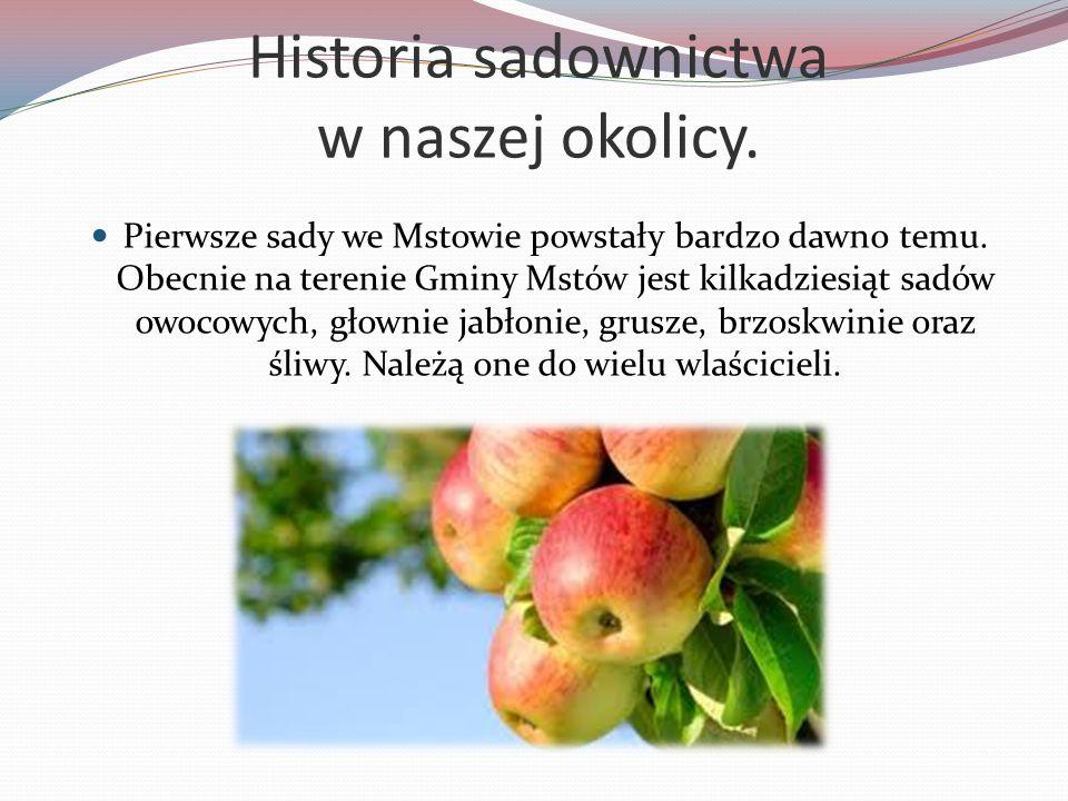 Historia sadownictwa w naszej okolicy.