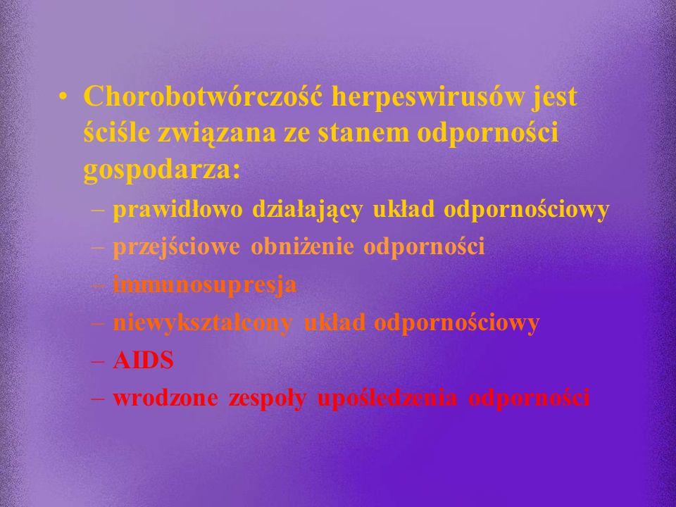 Chorobotwórczość herpeswirusów jest ściśle związana ze stanem odporności gospodarza: