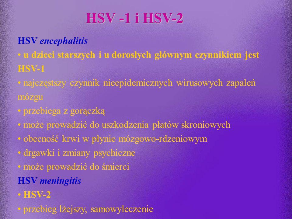 HSV -1 i HSV-2 HSV encephalitis