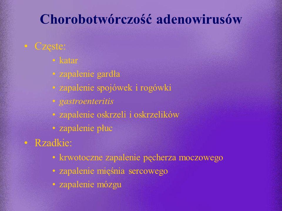 Chorobotwórczość adenowirusów