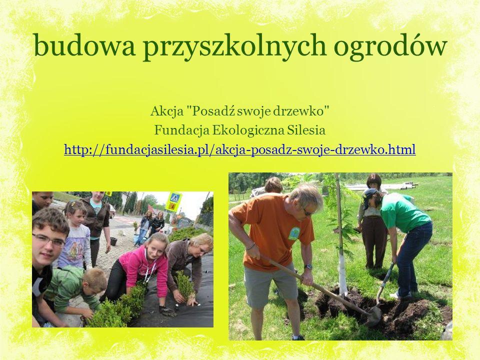 budowa przyszkolnych ogrodów