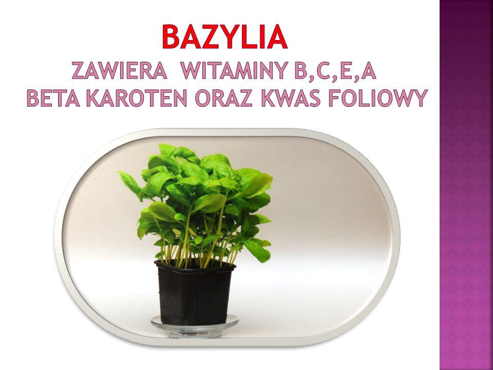 Bazylia zawiera witaminy b,c,e,a beta karoten oraz kwas foliowy