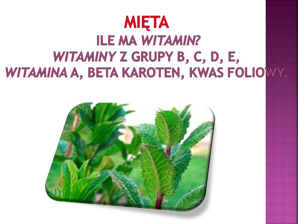Mięta Ile ma witamin witaminy z grupy B, C, D, E, witamina A, beta karoten, kwas foliowy.
