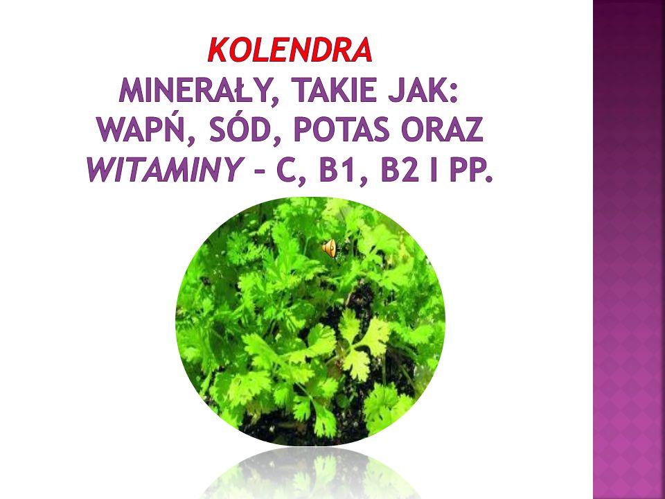 kolendra minerały, takie jak: wapń, sód, potas oraz witaminy – C, B1, B2 i PP.