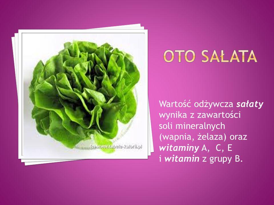 Oto sałata Wartość odżywcza sałaty wynika z zawartości