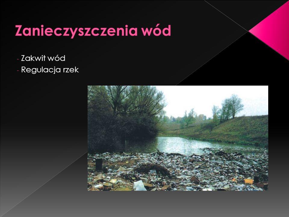 Zanieczyszczenia wód Zakwit wód Regulacja rzek