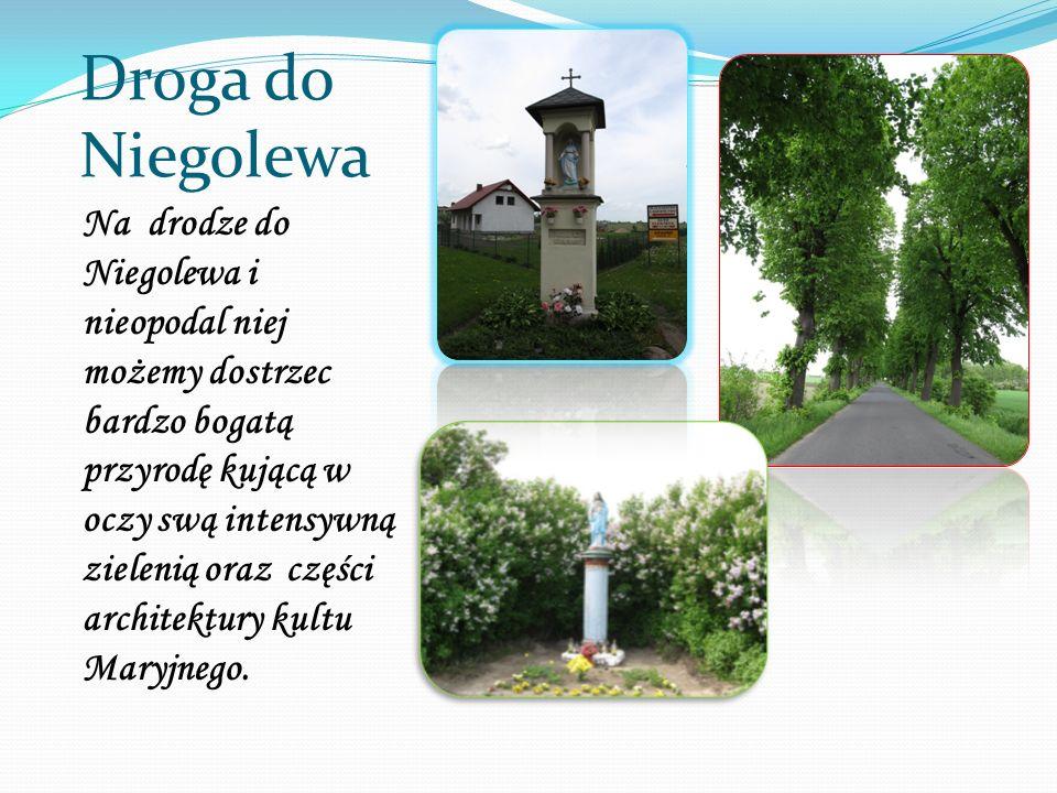 Droga do Niegolewa