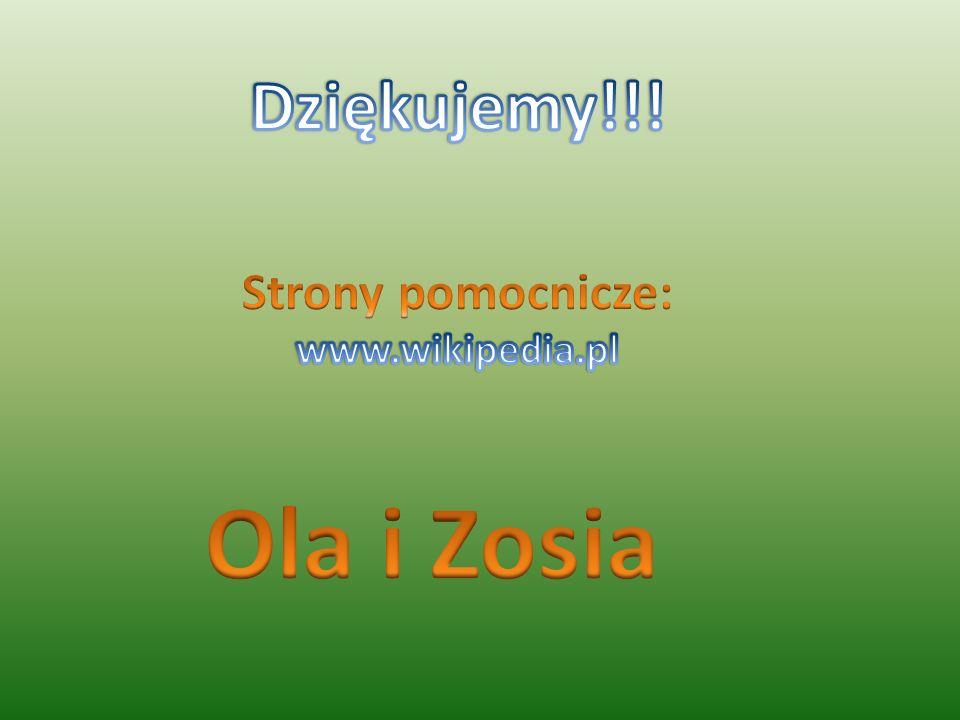 Dziękujemy!!! Strony pomocnicze: www.wikipedia.pl Ola i Zosia