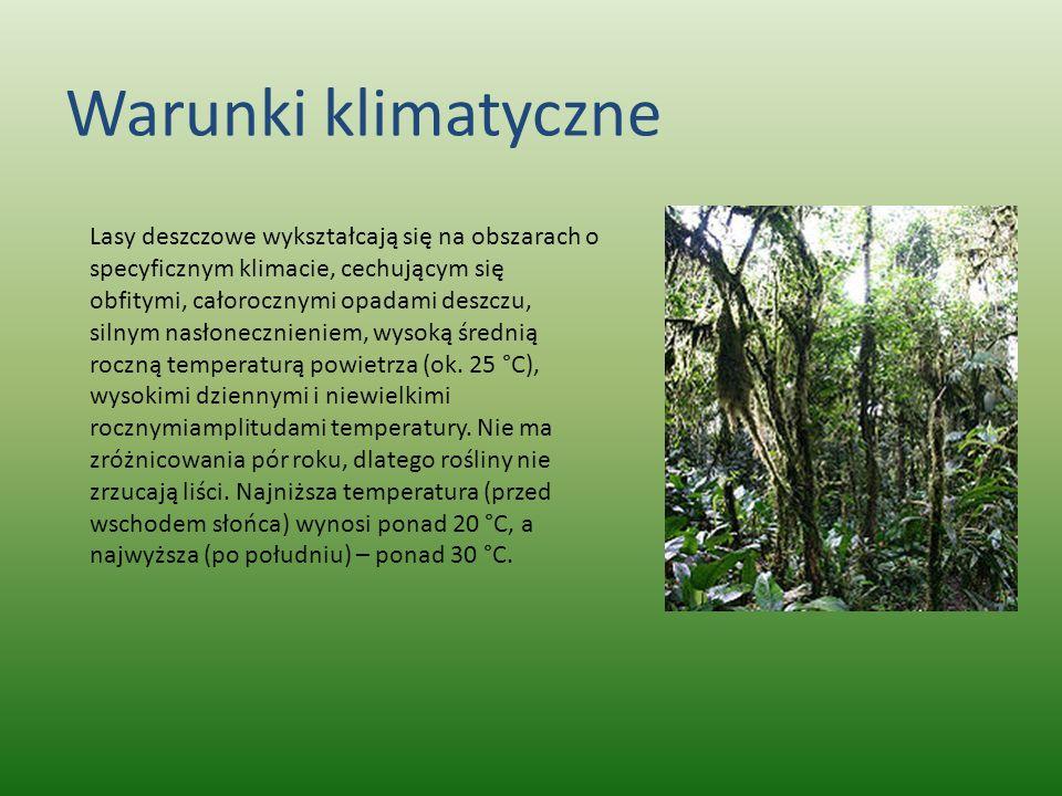 Warunki klimatyczne