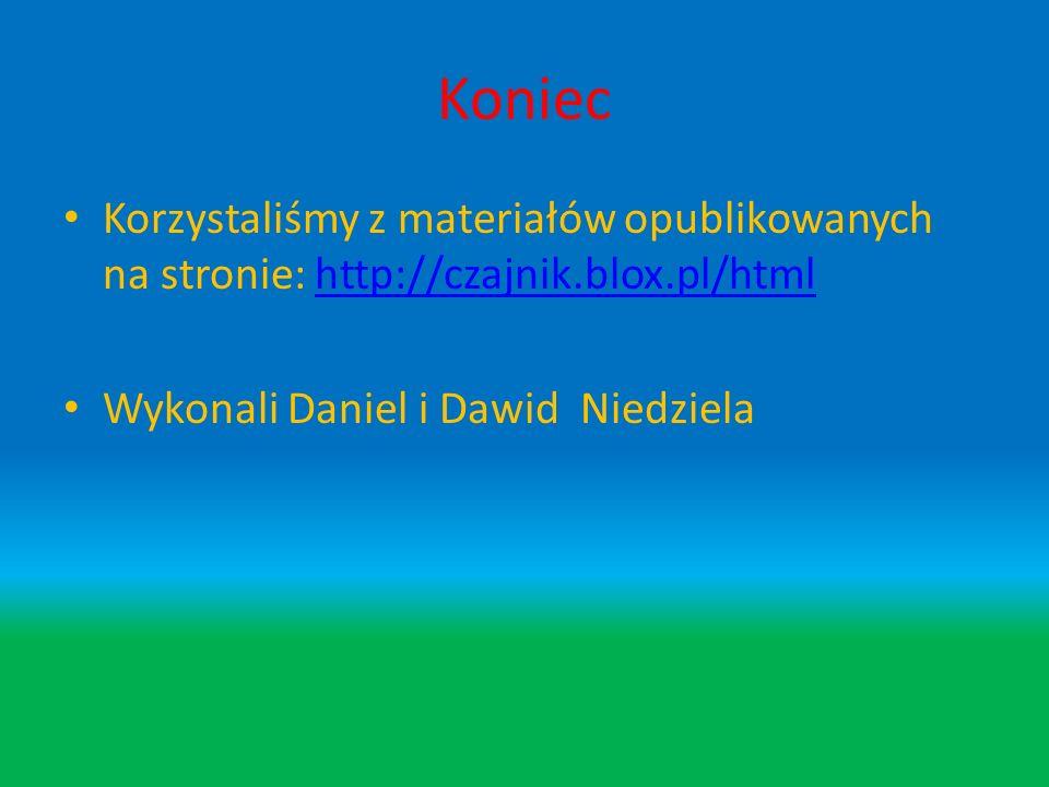 Koniec Korzystaliśmy z materiałów opublikowanych na stronie: http://czajnik.blox.pl/html.